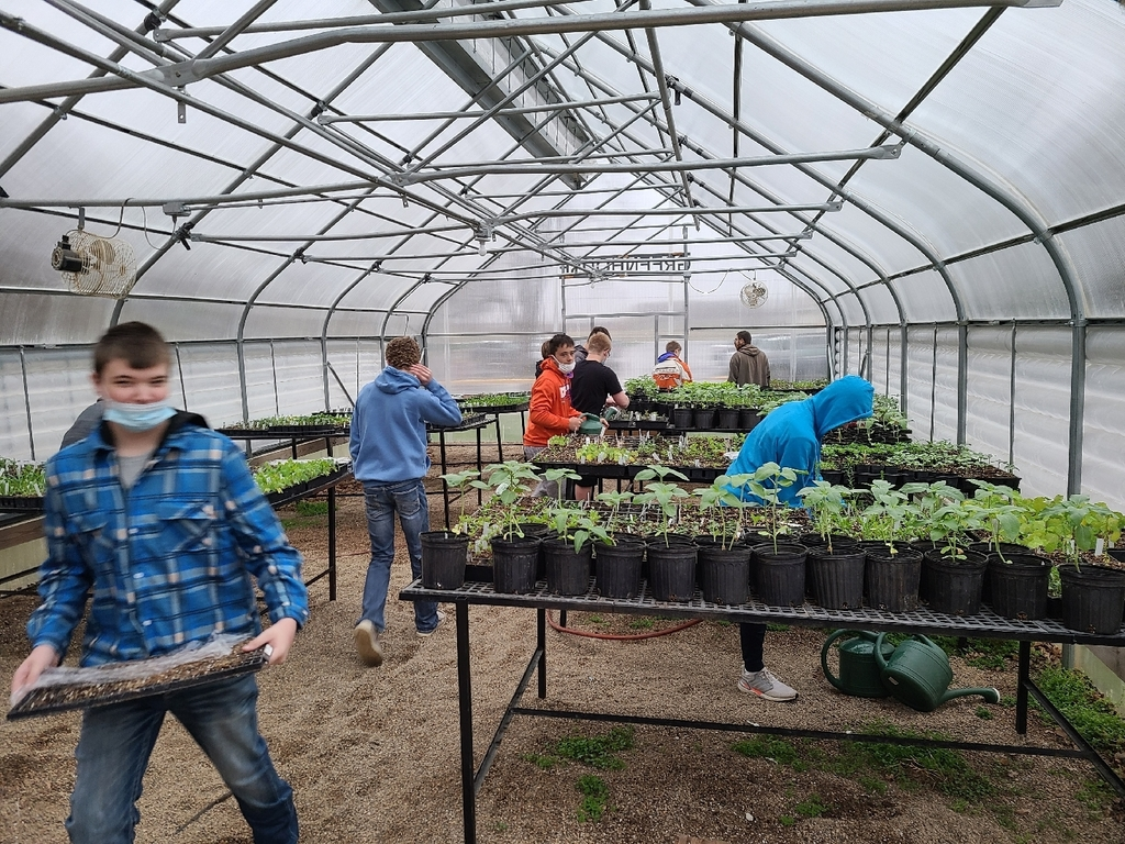Students working hard in the greenhouse